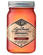 Everclear Moonshine Cinnamon USA Grain Spirit