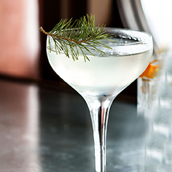 Dry Martini Cocktail
